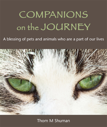 Companions on the Journey - download