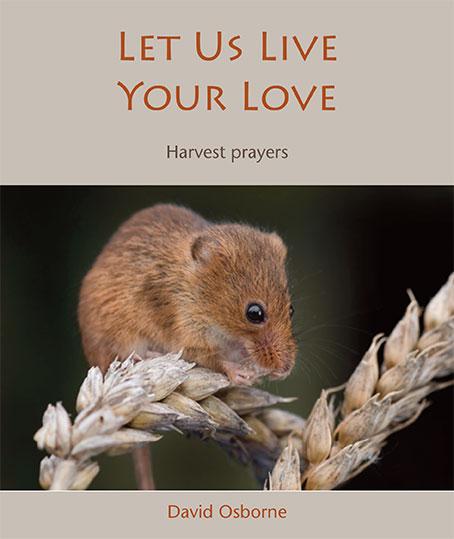 Let Us Live Your Love - download