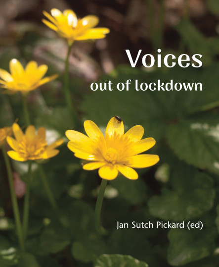 Voices Out of Lockdown