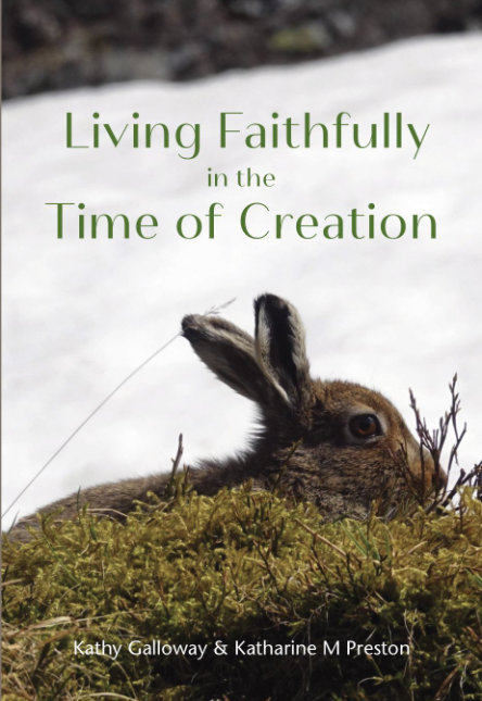 Living Faithfully in the Time of Creation