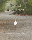 Grace Will Walk Us Home