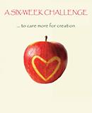 A Six-Week Challenge download