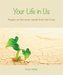 Your Life in Us download