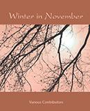 Winter in November download