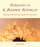 Walking in a Wider World download