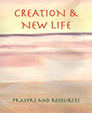 Creation and New Life download